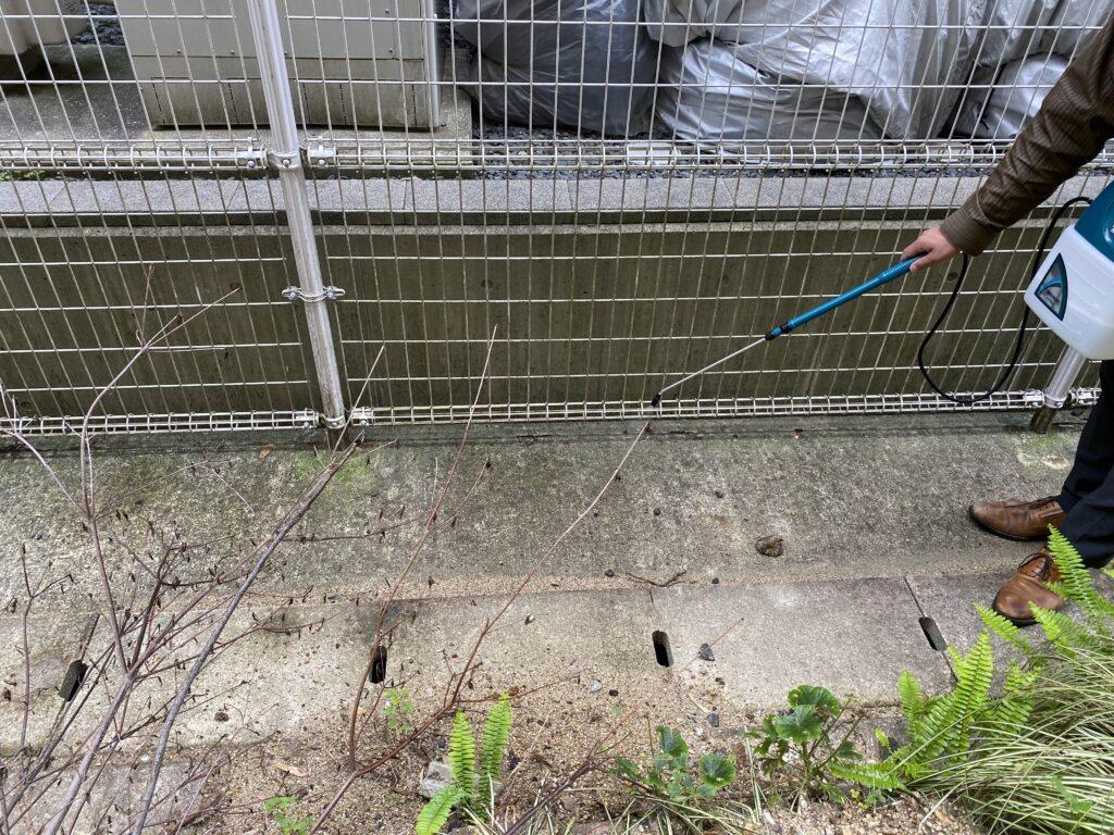 大阪府にて解体工事前の害虫駆除